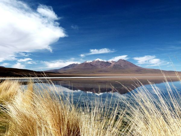 Edge Of The World Bolivia Sud Lipez 2015  Cold Lake Laguna Nature Volcano Mountain Calm