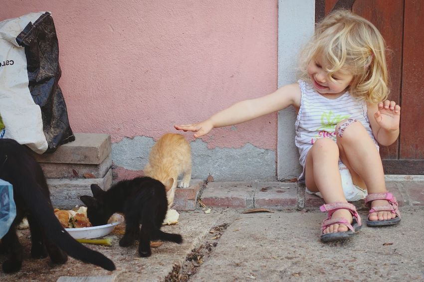 Domestic Animals Girls Animal Themes Full Length One Person Childhood Domestic Cat Pets Outdoors Child Sitting One Girl Only Real People Day One Animal Mammal Blond Hair Children Only People Shootermag Mobilephotography Eye4photography  Pet Portraits