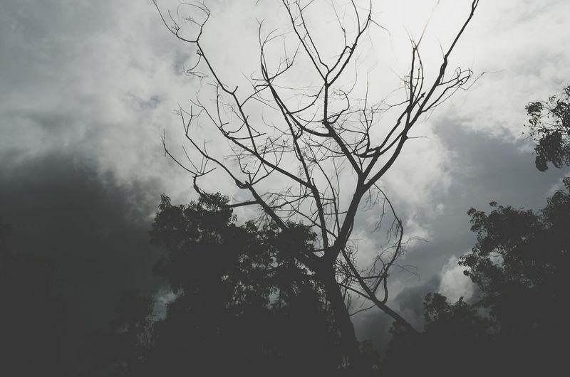 Goa ❤❤ Longdrivesinrains B&w Photography Nikon D5100