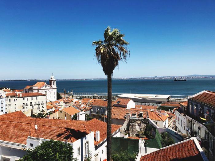 Lisbon18 First