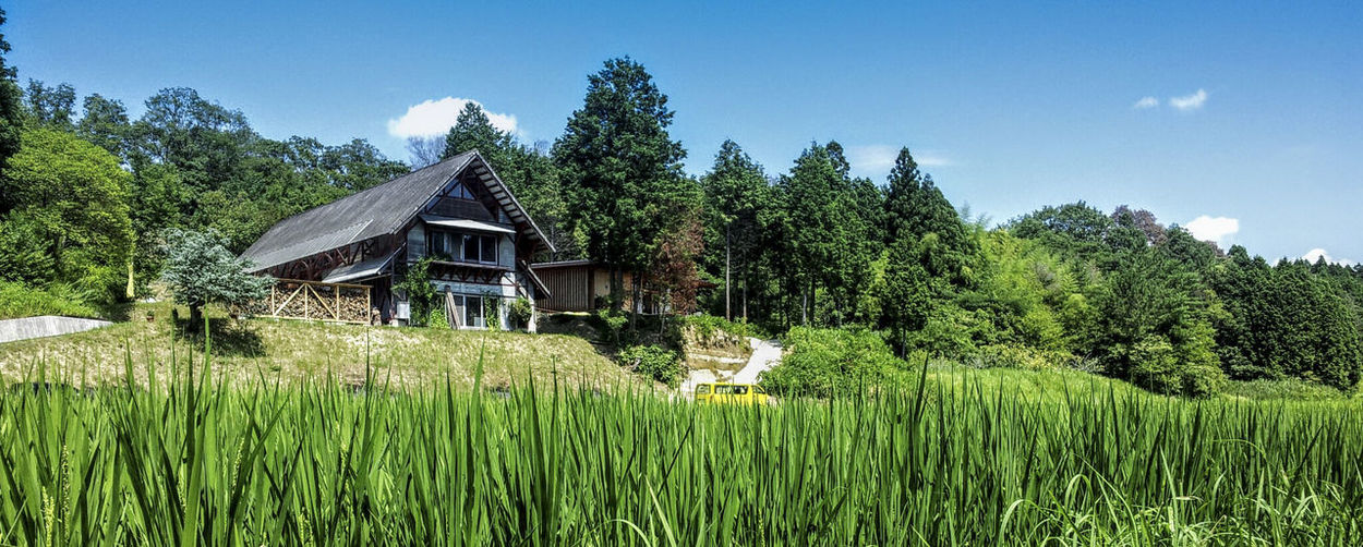 A house in the countryside of Japan with rice field and woodland Architecture Beauty In Nature Building Exterior Built Structure Concept Car Day Dream Escape House Landscape Nature No People Non-urban Scene Outdoors Residential Building Rice Fields  Rural Scene Scenics Sky Tree Wood Land