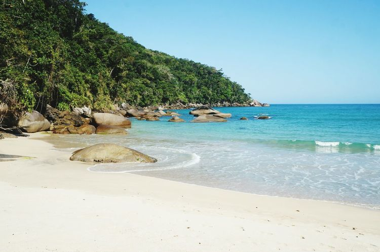 Beach Sea Water Tropical Climate Vacations Tourism Blue Travel Destinations Tranquility Day Sky Horizon Over Water Travel Brasil ♥ Vacations Paraty - RJ Nature