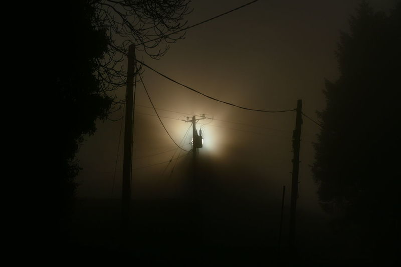 Foggy day.. Branch Cable Dream States Ethereal Fog Foggy Foggy Weather Nature Night No People Outdoors Silhouette Silhouette Silhouette_collection Sky Softness Sunset Tree