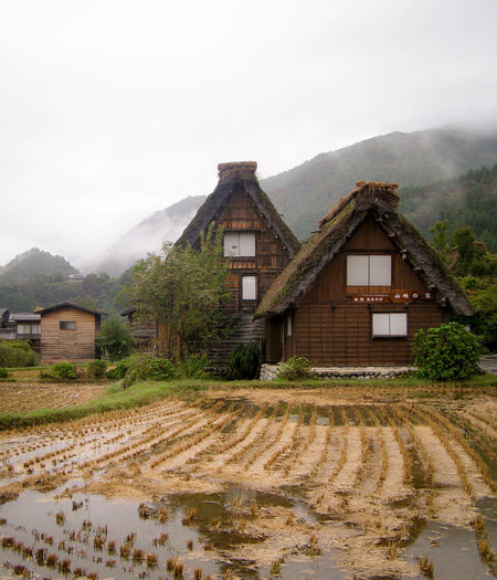 Architecture Built Structure Farmhouse Gifu Japan Landscape Mountain Overcast Rice Field Ricefield Rural Scene Shirakawa-go Shirakawago Thatched Roof Village Worldheritage Ultimate Japan