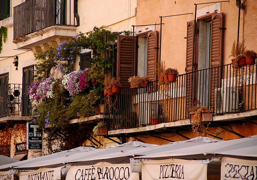 Roma Rome Italy Italia PiazzaNavona Piazza Navona RomanHoliday Italian Style Balcony Flowers Building Exterior Outdoors No People City Romantic Close-up Day Windows Window Frame Atmosphere Cafe Pizzeria Old Old Buildings