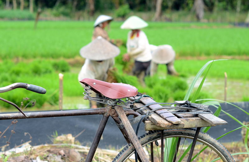 Close-up of bicycle with farmers working in background on field