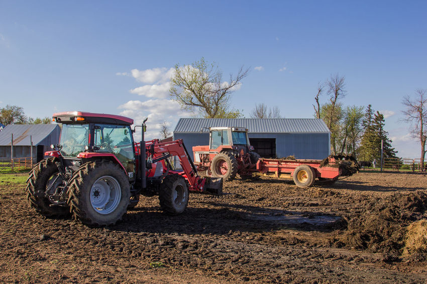 Agriculture Blue Sky Canon60d Canonphotography Cattle Shed Day Farm International Loader Manure Manure Spreader McCORMICK Outdoors Red Rural Scene Sky Tractor Tree