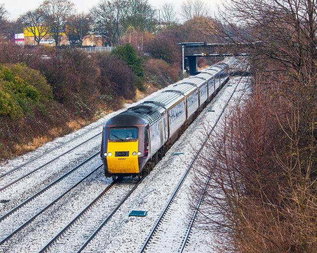 Train on railroad track in city