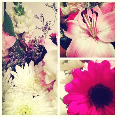 Husband Flowers