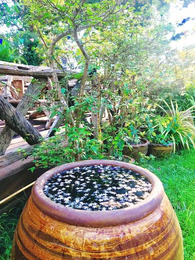 Water Jar Water Jar Water Wat Jar