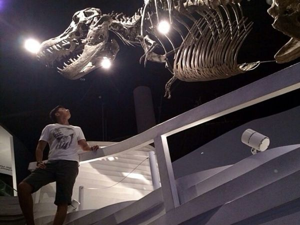 Light And Shadow The Human Condition Dinosaurs Museum Self Portrait Exploring New Ground