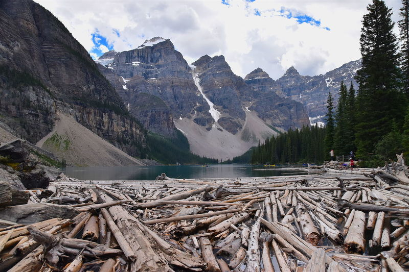 Beauty In Nature Canada Cloud Cloud - Sky Day Dead Deadwood  Geology Lake Landscape Moraine Lake  Mountain Mountain Range Nature Non-urban Scene Physical Geography Remote Rock - Object Rock Formation Rocky Mountains Scenics Sky Tranquil Scene Tranquility Wood