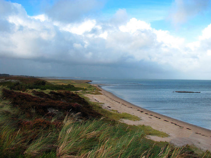Beach Beauty In Nature Cloud - Sky Day Grass Horizon Over Water Landscape Nature No People Outdoors Scenery Scenics Sea Sky Tranquility Water