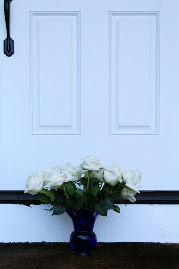 Home Is Where The Art Is Floral Rose Bouquet White Roses White White Album White On White Roses Front Door Delivery Special Delivery White Color White Rose Bouquet Of Roses Roses At Front Door EyeEm Masterclass Flowerporn Traveling Home For The Holidays Home Sweet Home Still Life Welcome Mat Blue Vase And Flowers Flowers At Door Flower Delievery Special Occasion Place Of Heart Be. Ready.
