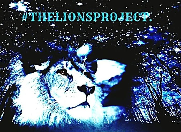 Thelionsproject Writing Books Graphic