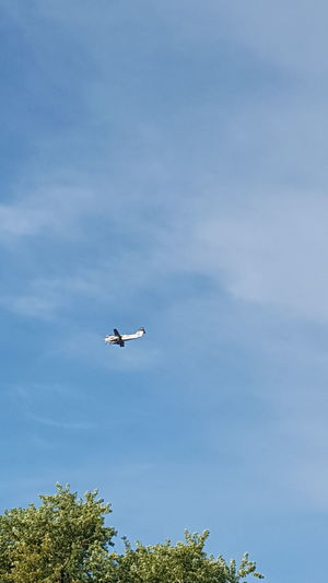 Flying Airplane Sky Blue Transportation Air Vehicle Day Airshow Outdoors Tree Nature No People Aerospace Industry Aerobatics