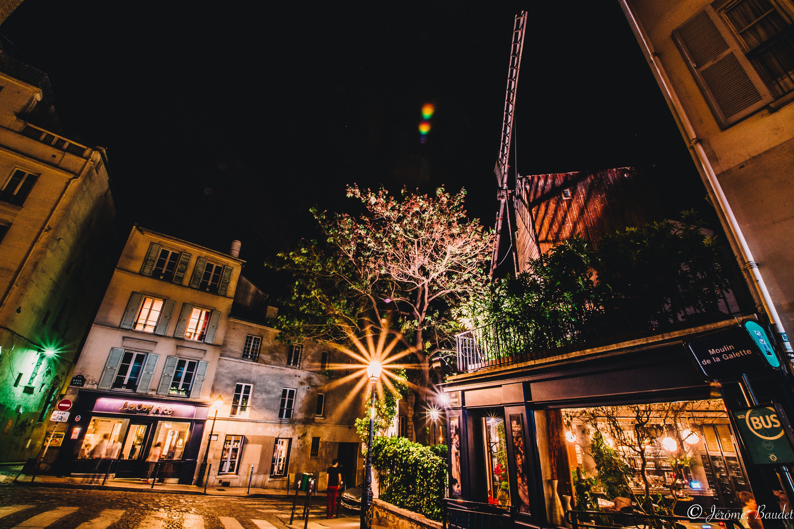 night, illuminated, building exterior, architecture, built structure, tree, building, city, plant, lighting equipment, no people, low angle view, nature, celebration, glowing, christmas, decoration, outdoors, motion, light