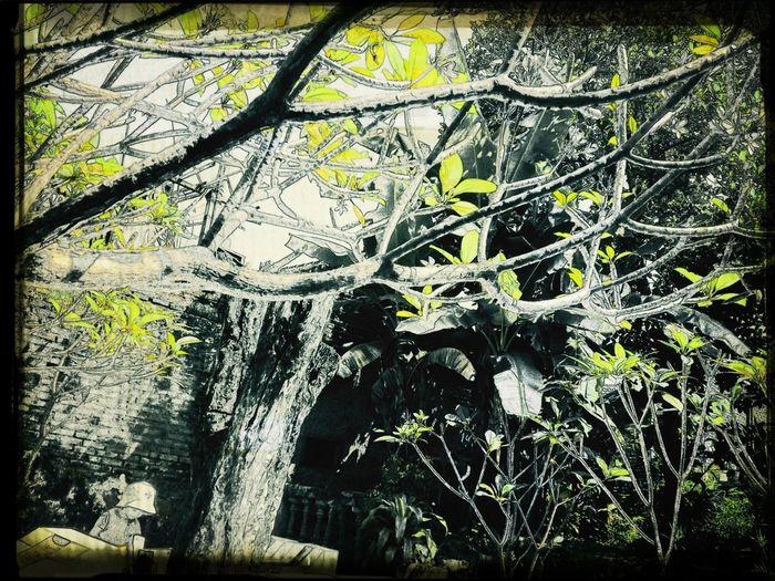 Visit To Ancestor