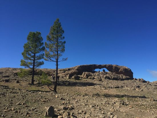 Arid Climate Beauty In Nature Blue Clear Sky Day Gran Canaria Landscape Nature Nature Outdoors Rock - Object Scenics Sky Tranquil Scene Tranquility Tree