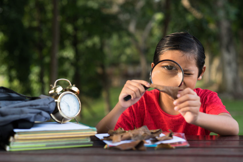 boy using magnifying glass Asian  Books Experiment Learning Research Advertisement Avtivities Boy Child Childhood Clock Curiosity Education Elementary Age Holding Leaves Leisure Looking Magnifying Glass Malaysian Park Real People Red Shirt School Studying