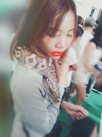 Snake ♥