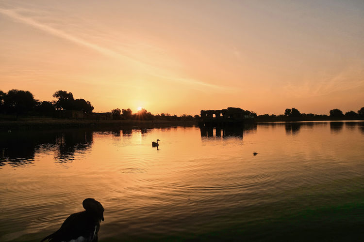Gadi Sagar Lake during sunrise in Jaisalmer, India. Beauty In Nature Idyllic Lake Nature Non-urban Scene One Person Orange Color Outdoors Plant Real People Reflection Scenics - Nature Silhouette Sky Sunset Tranquil Scene Tranquility Tree Water Waterfront
