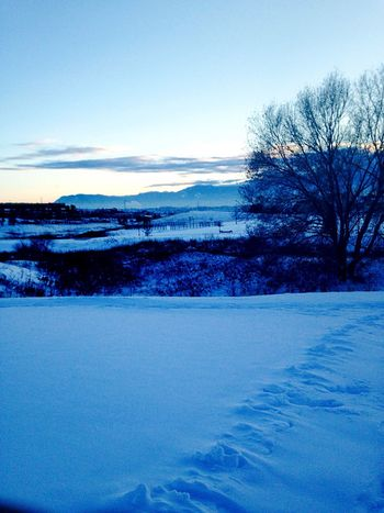 Winter run Winter Landscape Trees Clouds And Sky Mountains Beautiful Peace And Quiet Find Me On Path