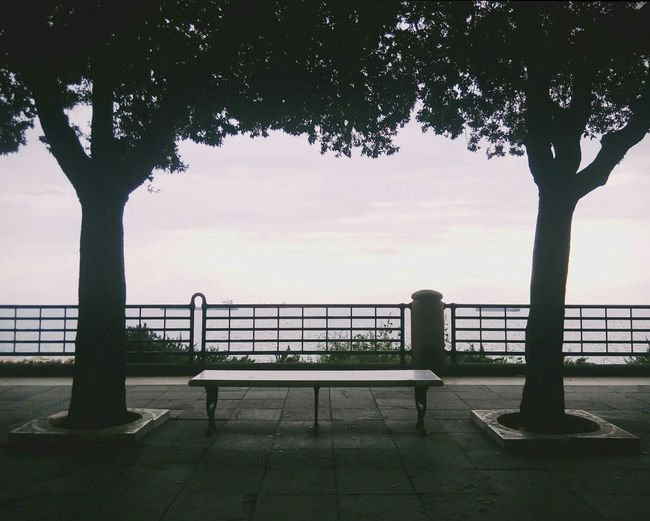 Empty seat amidst trees against sky