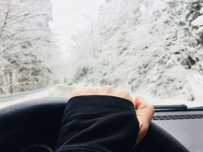 Cropped hand driving car against bare trees during winter
