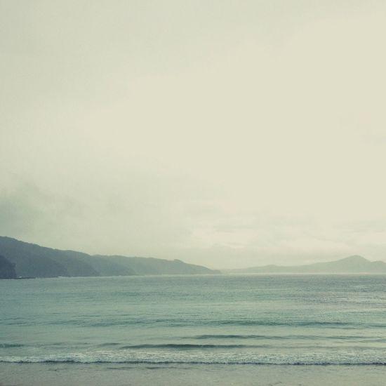 Beach Enjoying Life Ocean Observing Nature