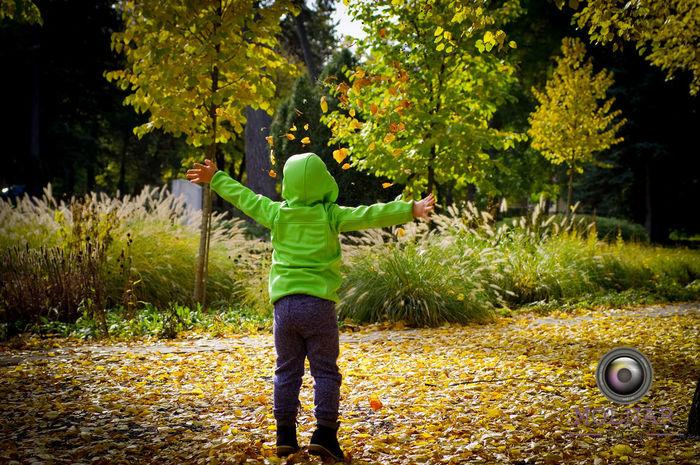 #photo Autumn Autumn Falls Autumn Colors Autumn Leaves Debrecen Debreceni Nagyerdő Falls In Air My Son Outdoor Outdoor Photography Photograph Photographer Photography