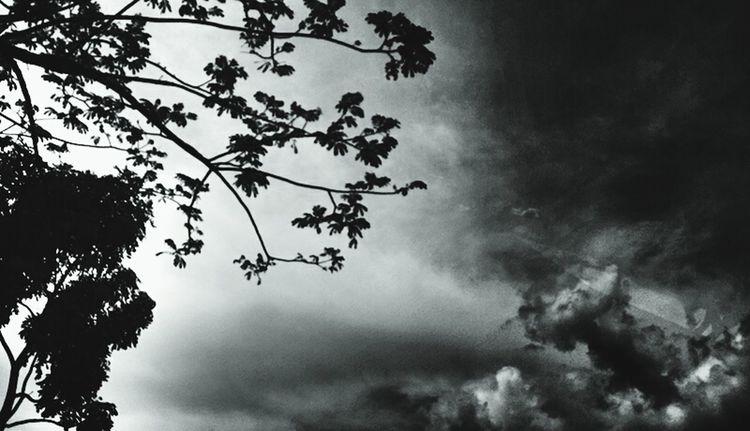 Dark sky invaded the country. Eva Filter Dark Skyscraper Skyporn BW_photography