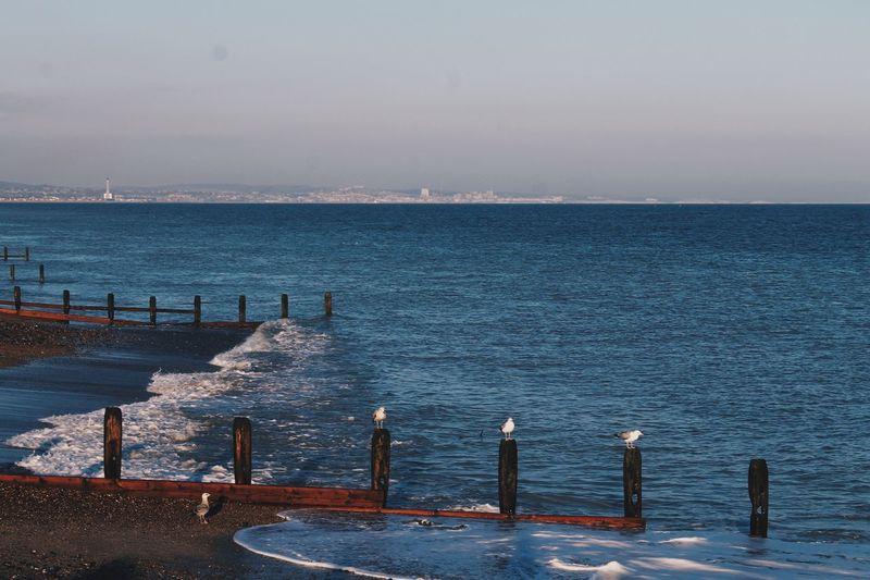 Blue Sea Water Sky Beach Horizon Over Water Day Worthing Brighton EyeEmNewHere Long Goodbye
