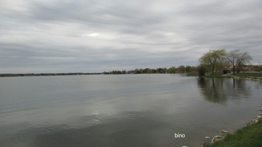 Out Shooting Around The Lake Grey Day No People Grey Reflections Lone Tree Lake Like Glass Lake Cadillac Pure Michigan