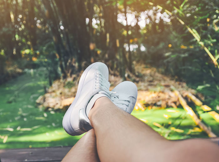 Low Section Of Woman Relaxing Against Trees