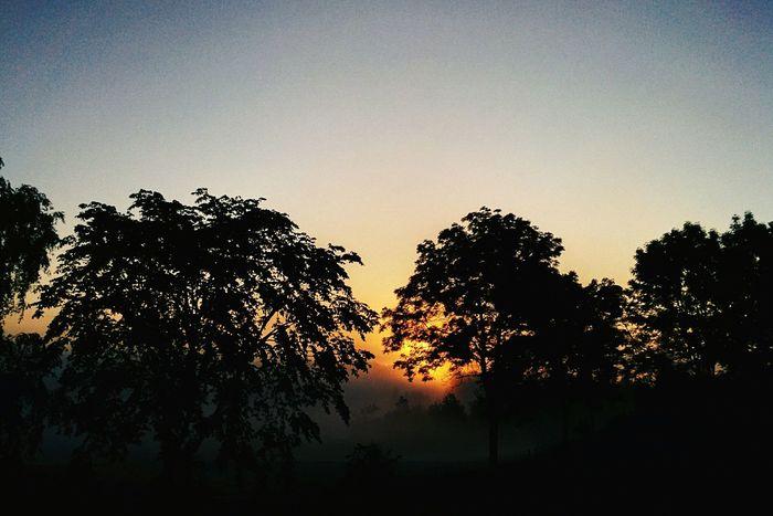 Sunrise Morning 🌅