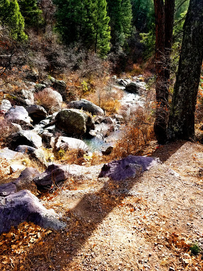 Day Nature Outdoors High Angle View Sunlight Close-up Backgrounds Sky Beauty In Nature Mountain No People Mountain Stream, Mountain Creek