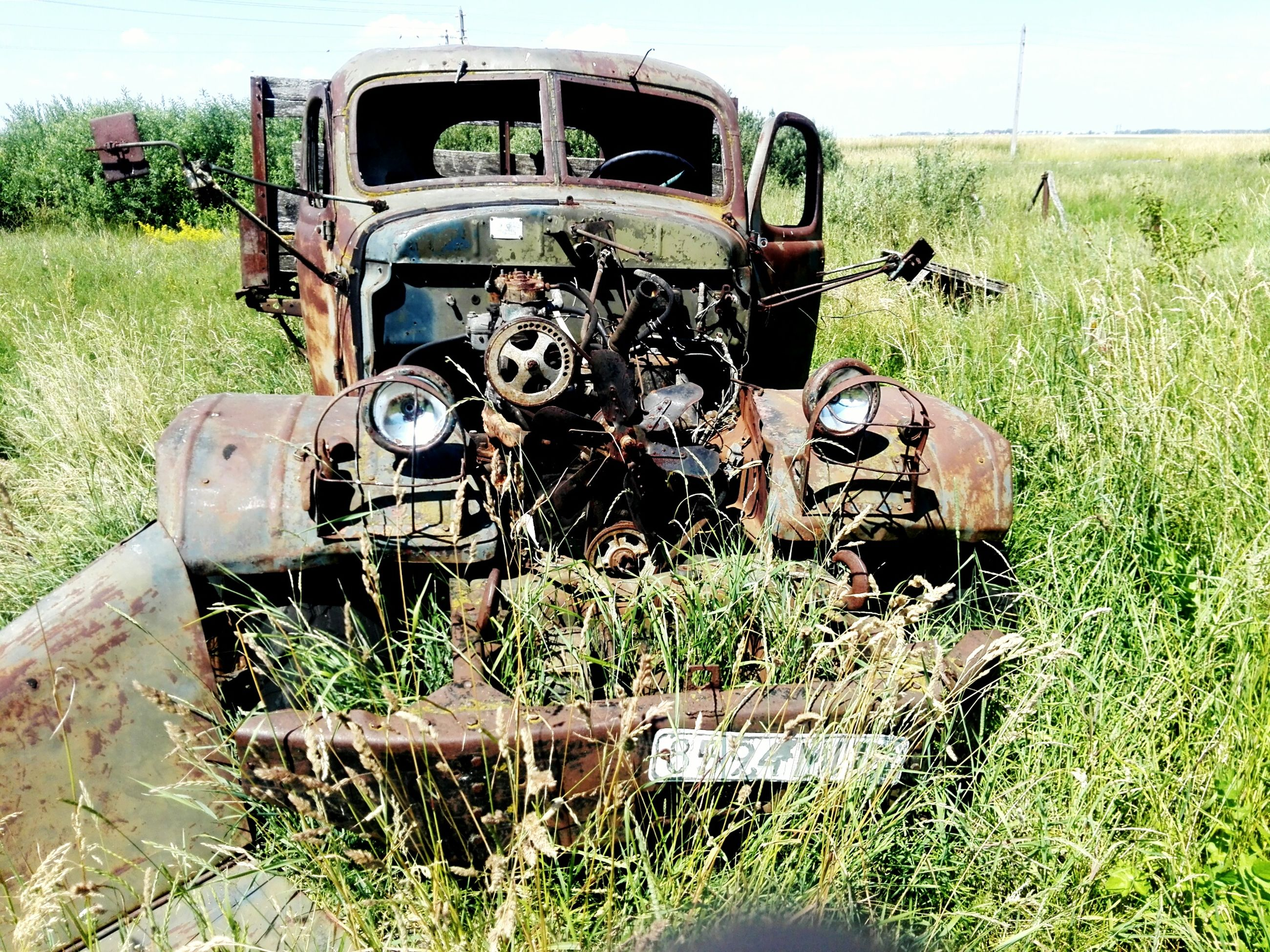 land vehicle, transportation, mode of transport, grass, field, tractor, obsolete, grassy, plant, stationary, old, growth, green color, day, rural scene, run-down, outdoors, no people, parked, nature, machinery, landscape, deterioration