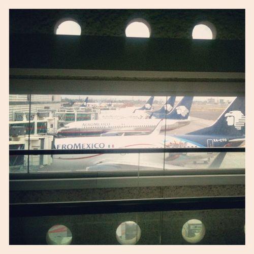 Formados Squaready Mexico Terminal2 Aeropuerto City Plane Travel