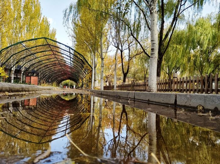 The Beauty of autumn Reflection Autumn Tree Water Sky Architecture First Eyeem Photo