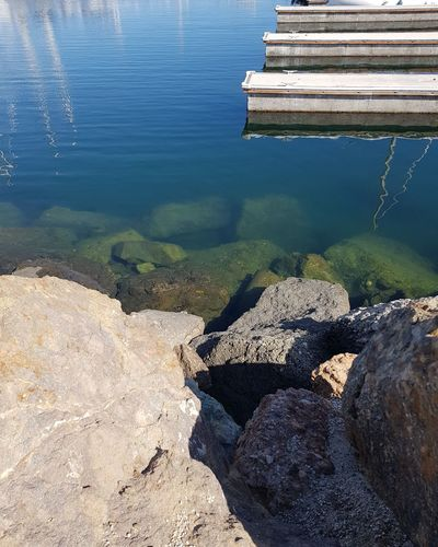 Marina Life Sea