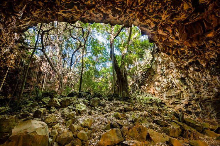 Australia Australian Outback Green Landscape Landscapes With WhiteWall Lava Tubes Nature Orange Rocks Tree The KIOMI Collection