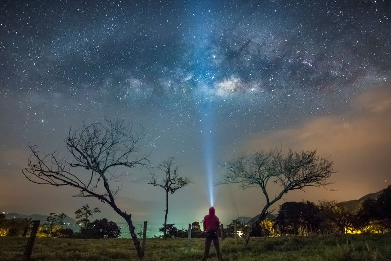 Lost In The Landscape Astronomy Bare Tree Beauty In Nature Constellation Field Galaxy Grass Landscape Milky Way Nature Night Outdoors Real People Scenics Sky Space Star - Space Star Field Tranquil Scene Tranquility Tree Perspectives On Nature See The Light