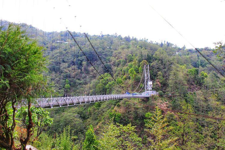 Sensor bridge Nature Outdoors No People Beauty In Nature Brıdge Bridge In The Nature Bridhe Between Hill