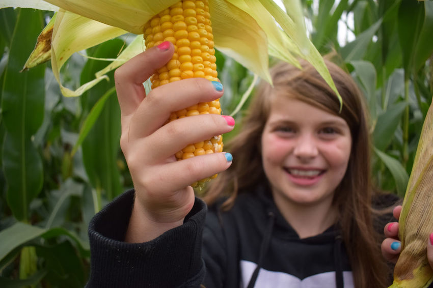Close-up Content Day Focus On Foreground Front View Girls Happiness Human Face Long Hair Looking At Camera Outdoors Portrait Smiling Toothy Smile Young Adult Corn Corn On The Cob Vibrant Color Farm Nature Field Green Family❤ Focal Point