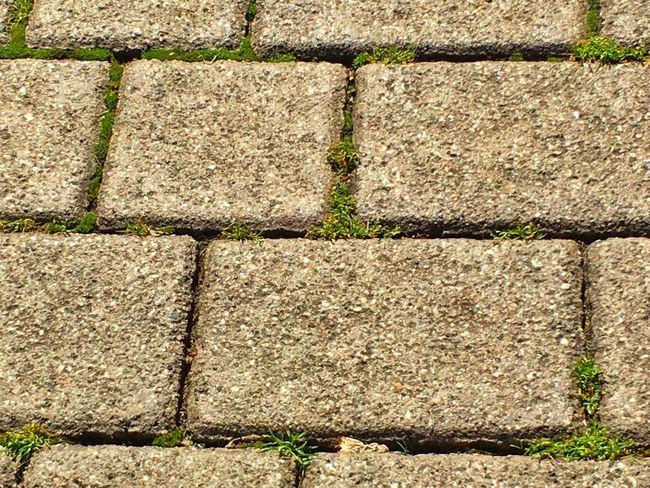Urban Geometry Gehweg Gehsteig Fügen Stein Stone Grass Gras