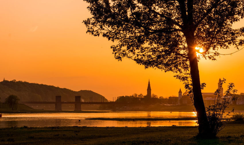 Silhouette trees by river against orange sky