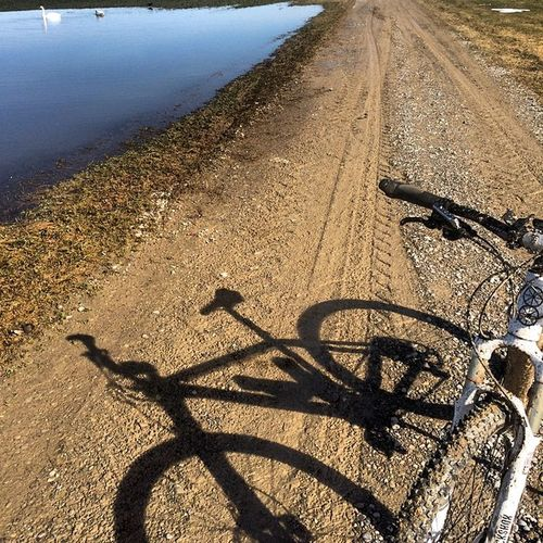 Mud Matsch Tauwetter MTB Mountainbike Sun Sonne Germany Bavaria Schwan  Rockshox White Dream 650b