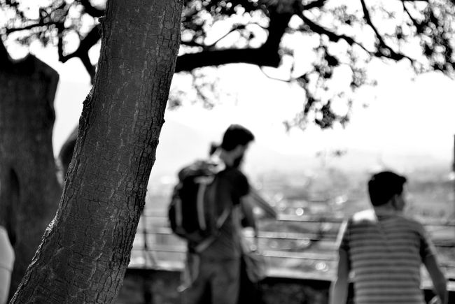 ..abbracci! Nikonphotography Lucca Italy🇮🇹 Tuscany Autdoor Huaweiphotography Cityscape Love Love ♥ Bnw_collection TOWNSCAPE Photocity Black And White Biancoenero Aspettando Tree Men Tree Trunk Togetherness Women Branch Sky Climbing Wall Couple - Relationship Single Parent Romance Romantic Activity Flirting