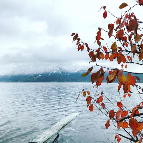 Lake Zug Beauty